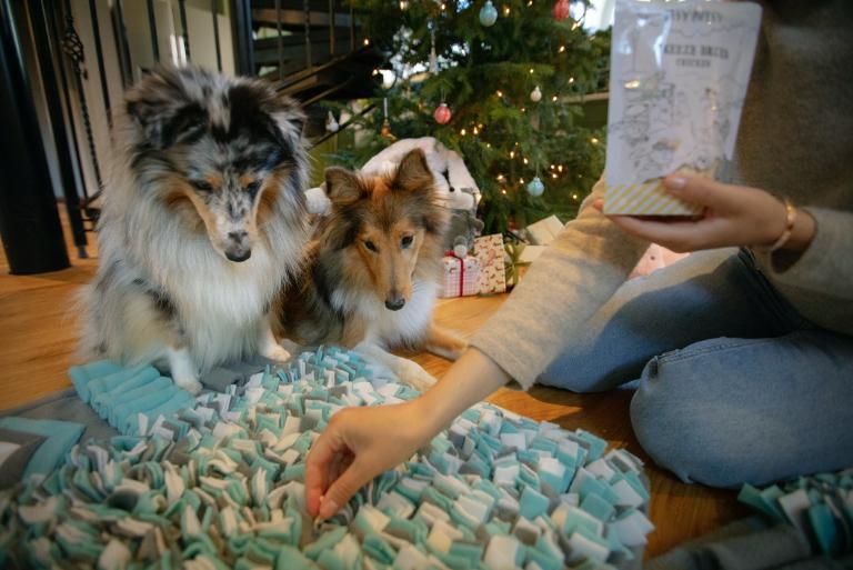 Sunne julegaver til ditt kjæledyr