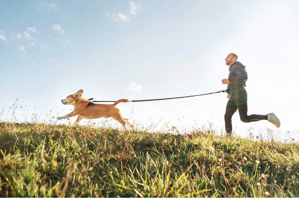 Løpetur med hund om sommeren